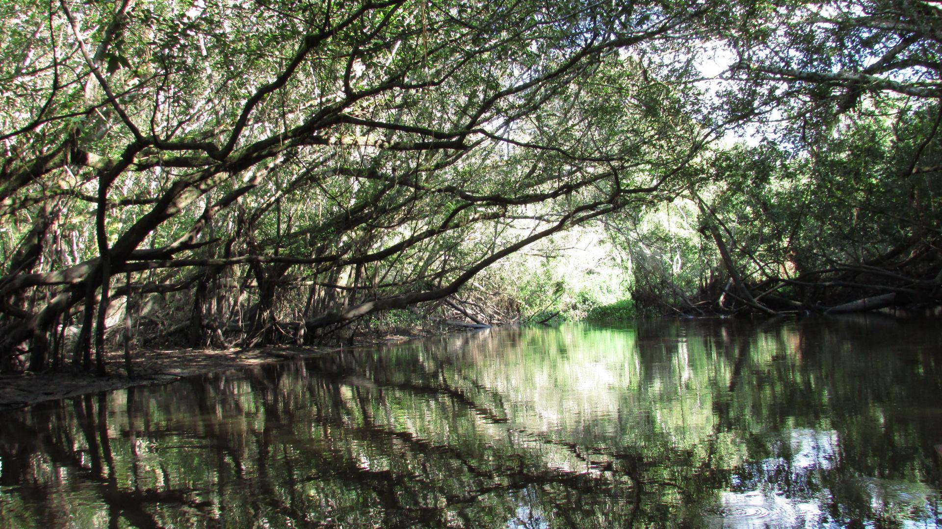 Expérience nature et tourisme rural