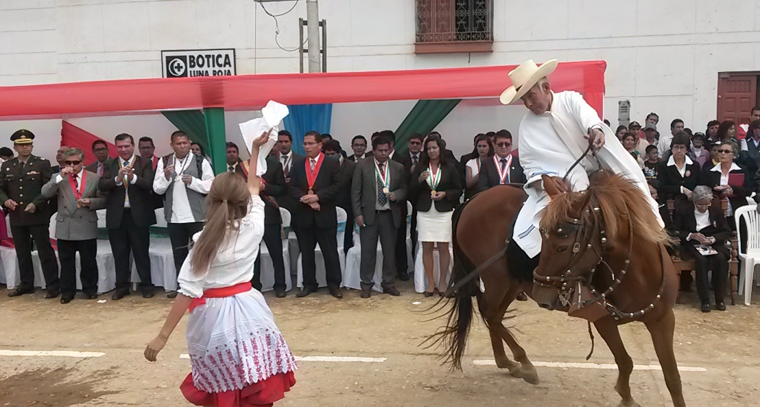 Caballo de paso Nord du Pérou