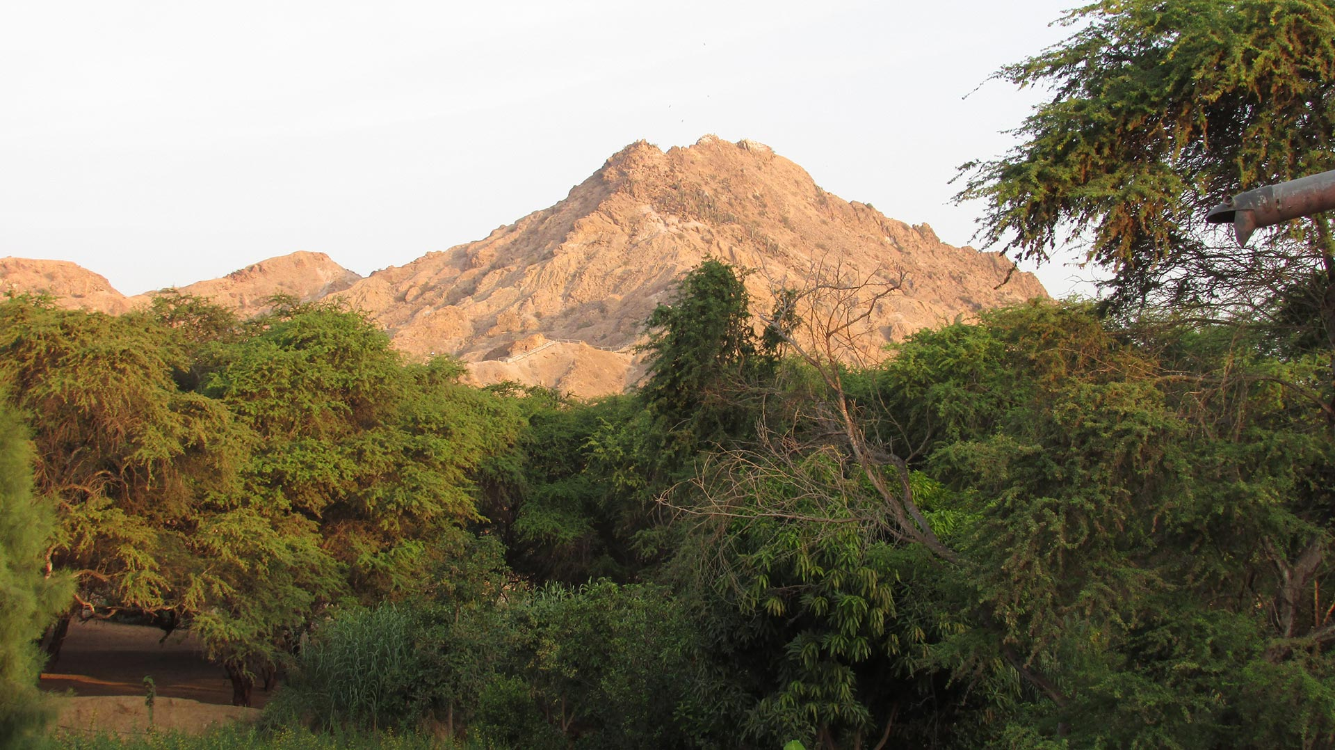 Tucume Nord du Pérou