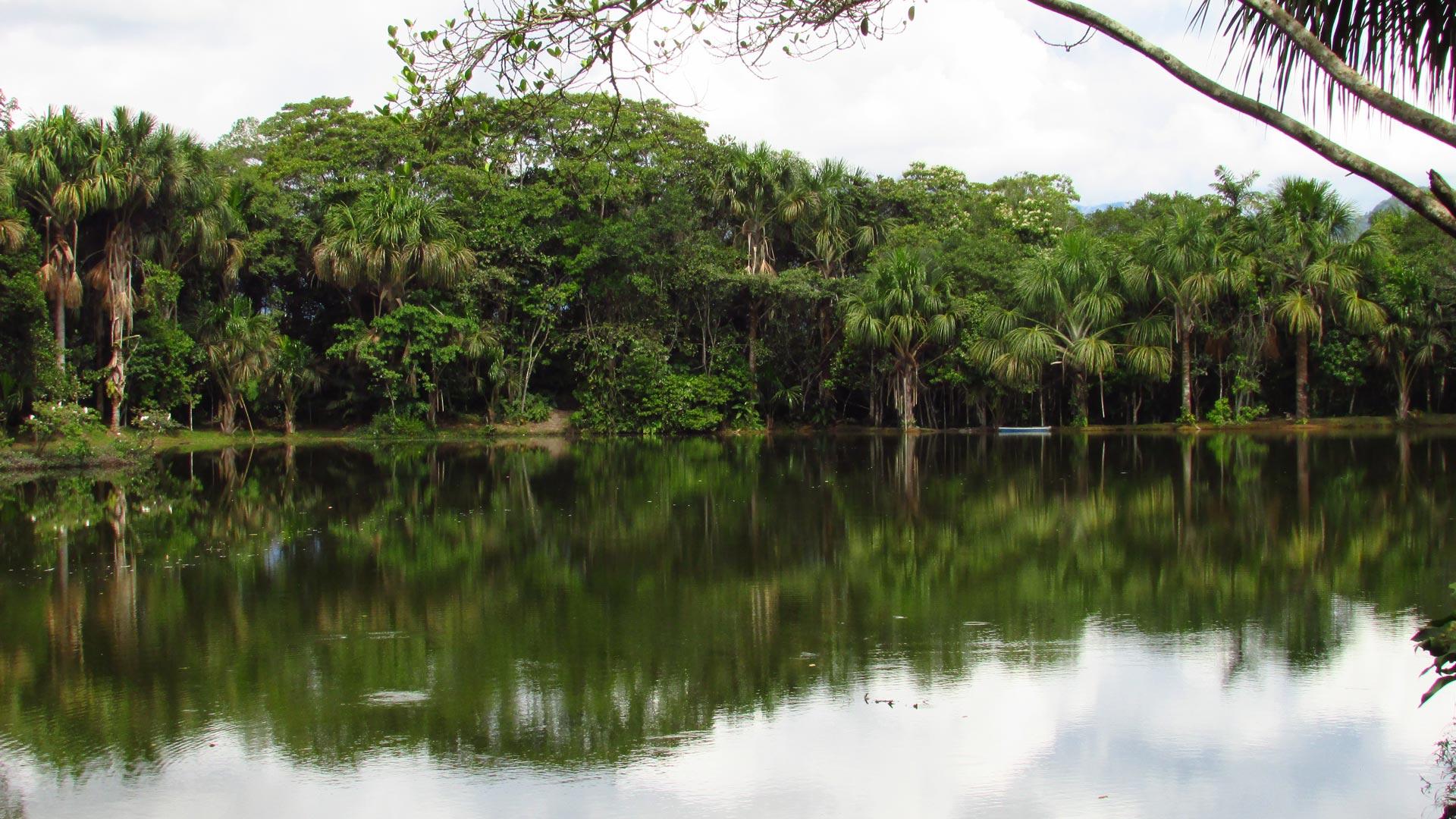 Région San Martin