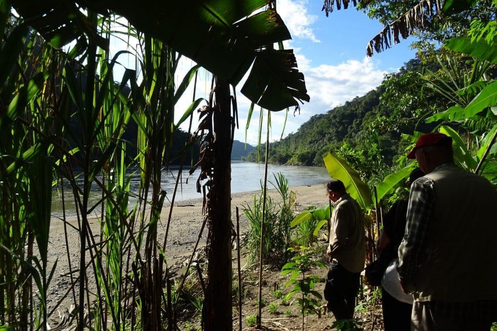 Proche du rio Maranon, Amazonie péruvienne