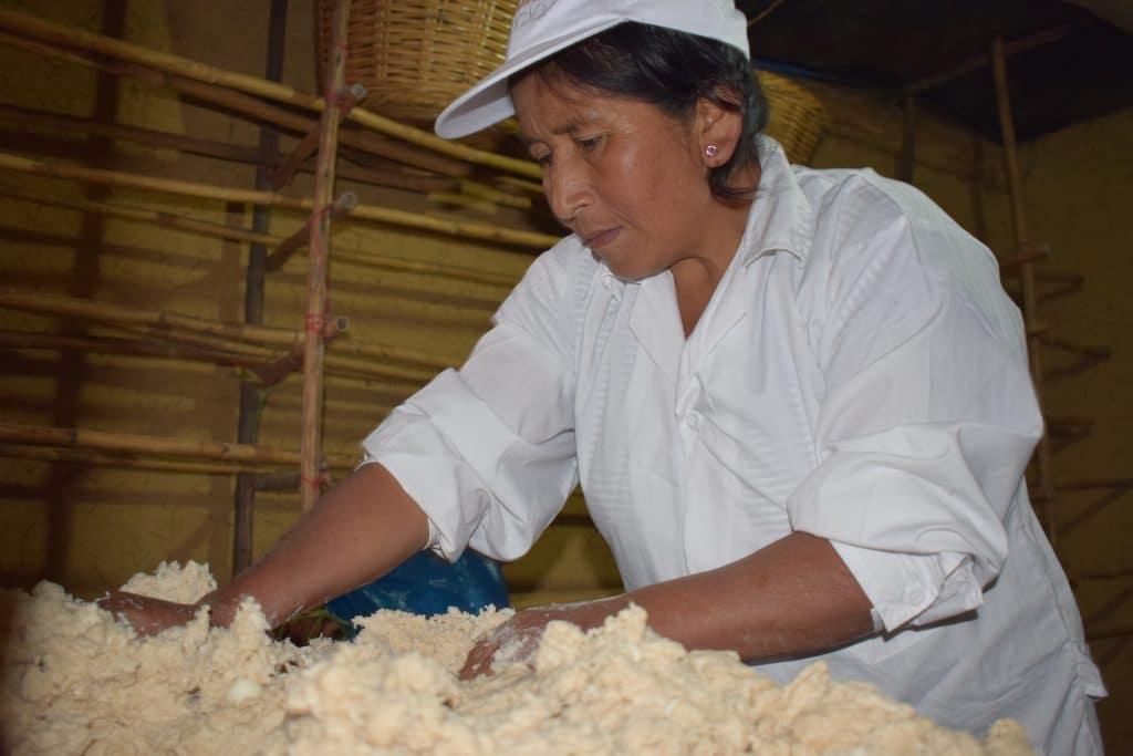 Tourisme rural à Cuispes, nord du Pérou