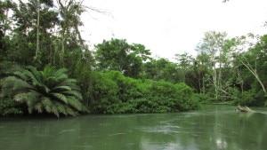 Rio Negro, San Martin, Nord du Pérou, Tarapoto