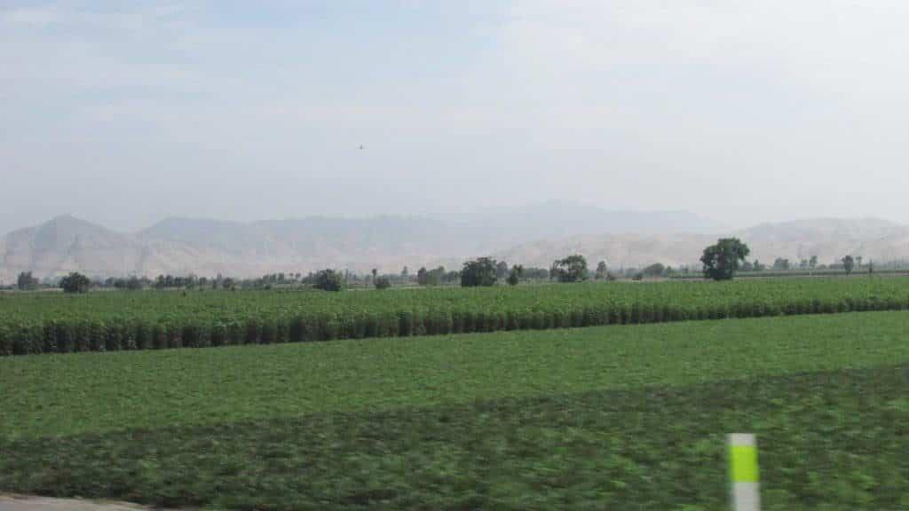 valley south Lima, san Vicente de Canete