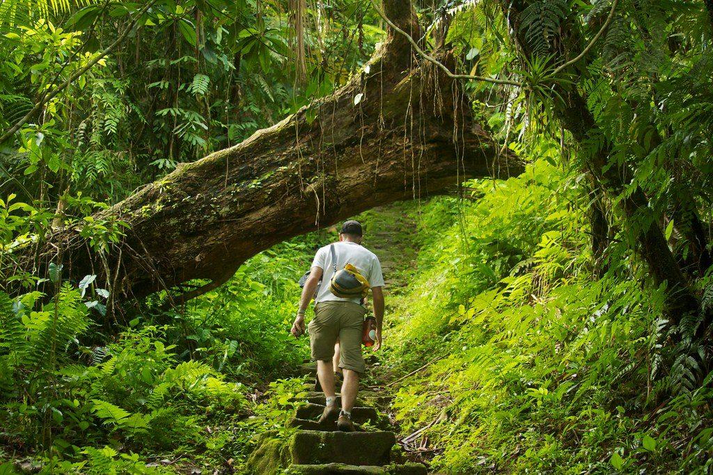 Trek Colombie tourisme responsable