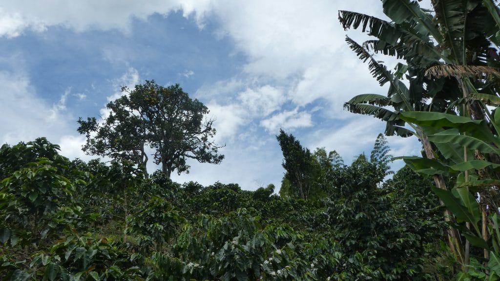 Sehenswürdigkeiten in Kolumbien