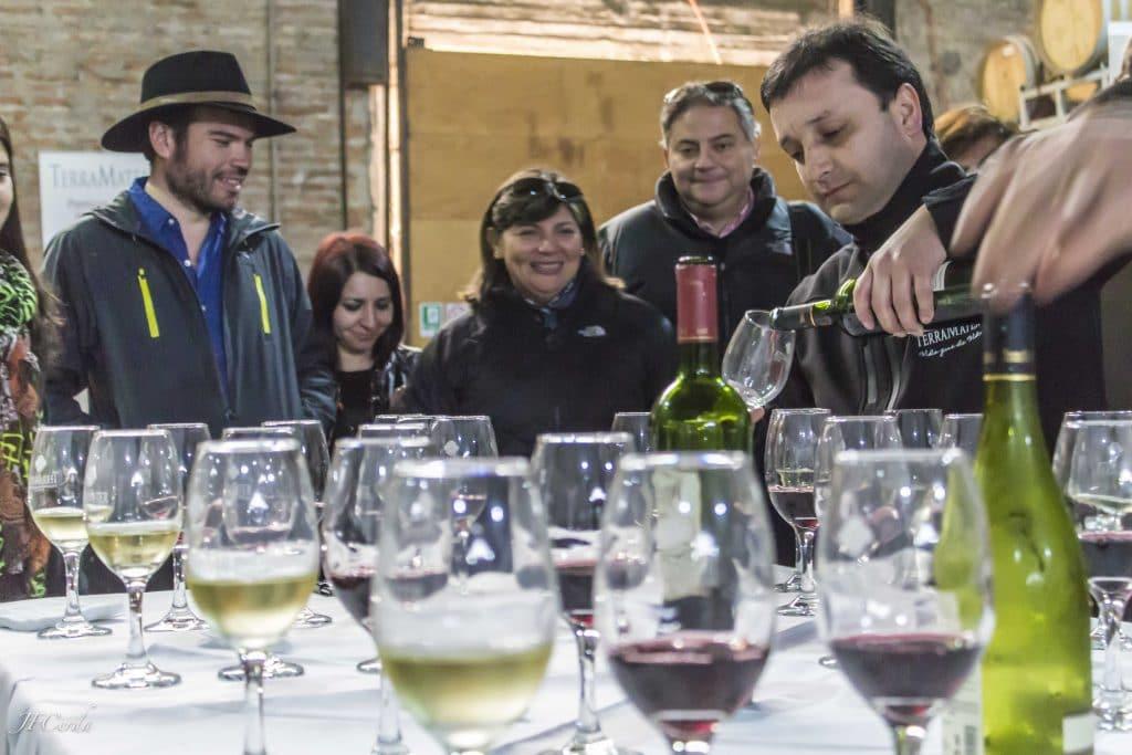 Dégustation de vin Chili