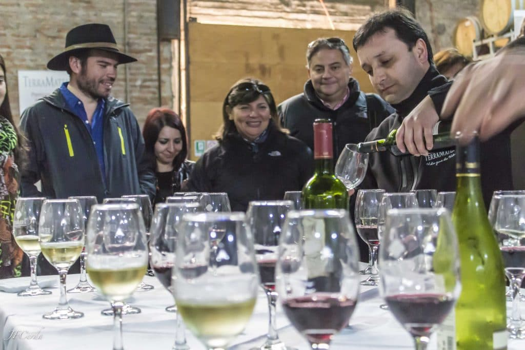 Sites to visit, Wine tasting Maipo Valley, Chile