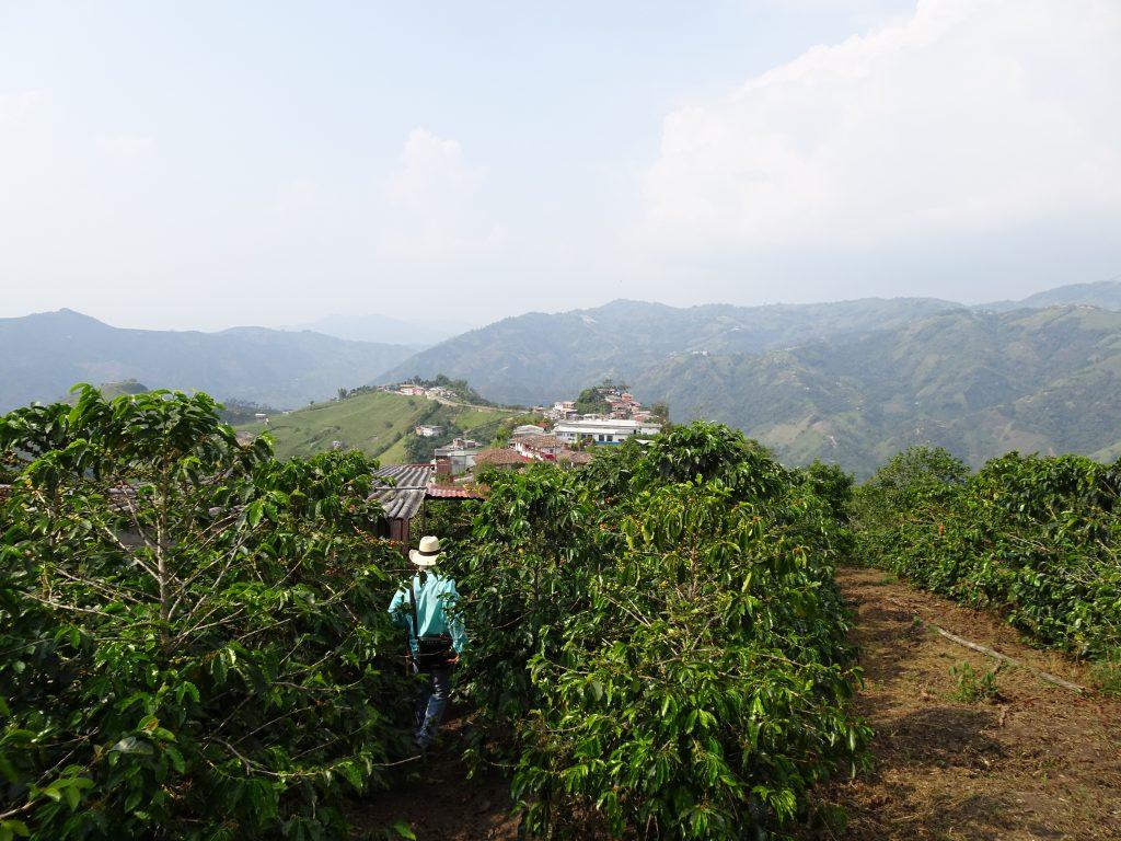 Aktivitäten in Kolumbien